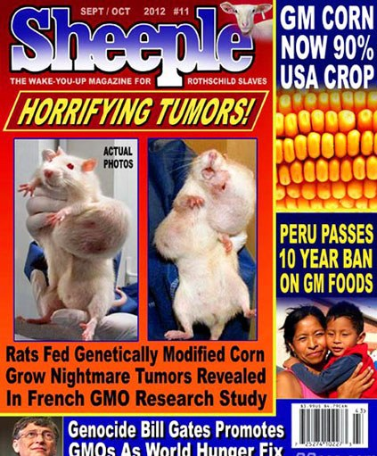 gmo-tumors