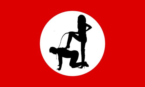 feministflag
